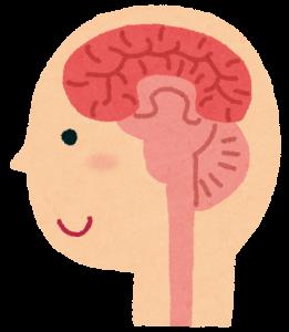 発達障害は脳の機能の障害